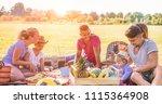happy families doing picnic in... | Shutterstock . vector #1115364908