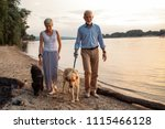 Stock photo shot of a happy senior couple walking with their dogs by the river 1115466128