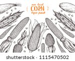 corn on the cob hand drawn... | Shutterstock .eps vector #1115470502