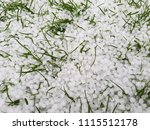 Hail On A Lawn After A Storm