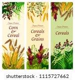 cereal  grain and vegetable...   Shutterstock .eps vector #1115727662