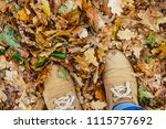 autumn leaf with single male... | Shutterstock . vector #1115757692