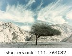 landscape with canyon in desert ...   Shutterstock . vector #1115764082