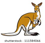 kangaroo female with joey  in...   Shutterstock .eps vector #111584066
