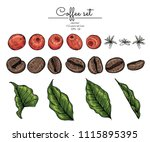 sketch floral botany collection.... | Shutterstock .eps vector #1115895395