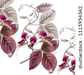floral art abstract botanical... | Shutterstock . vector #1115954342