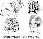 vector drawings sketches... | Shutterstock .eps vector #1115961752