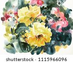yellow roses hand painting...   Shutterstock . vector #1115966096