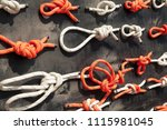 many types of knots... | Shutterstock . vector #1115981045