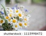 midsummer in latvia ... | Shutterstock . vector #1115998472