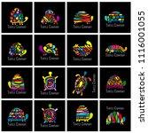 turtle logo set for your design | Shutterstock .eps vector #1116001055