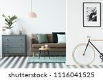 bike standing in white open... | Shutterstock . vector #1116041525