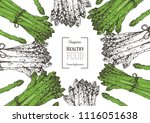 asparagus vector illustration.... | Shutterstock .eps vector #1116051638