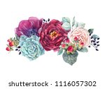 watercolor illustration of a... | Shutterstock . vector #1116057302