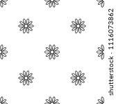 seamless daisy flower pattern.... | Shutterstock .eps vector #1116073862