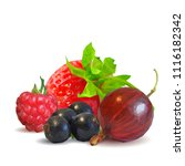 fresh  nutritious and tasty...   Shutterstock .eps vector #1116182342