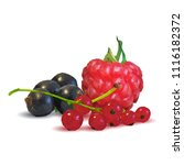 fresh  nutritious and tasty...   Shutterstock .eps vector #1116182372