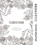 vector floral frame with hand... | Shutterstock .eps vector #1116190088