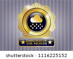 gold shiny badge with rain... | Shutterstock .eps vector #1116225152