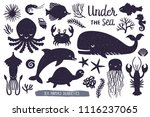 vector set of underwater... | Shutterstock .eps vector #1116237065