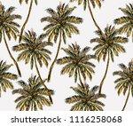 beautiful botanical vector... | Shutterstock .eps vector #1116258068