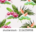 beautiful floral exotic vector... | Shutterstock .eps vector #1116258908