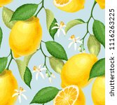 seamless pattern with lemons | Shutterstock .eps vector #1116263225