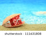 Gift Box In A Sea Shell On The...