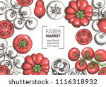 tomatoes hand drawn... | Shutterstock .eps vector #1116318932