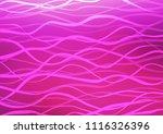 light pink vector natural...   Shutterstock .eps vector #1116326396