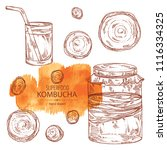 collection of kombucha ... | Shutterstock .eps vector #1116334325