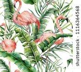 watercolor tropical pattern... | Shutterstock . vector #1116364568