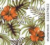 tropical vintage hibiscus... | Shutterstock .eps vector #1116374612