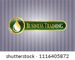 gold emblem with drop icon and ... | Shutterstock .eps vector #1116405872