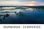 flooded country road and... | Shutterstock . vector #1116414122
