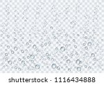 realistic water droplets on the ... | Shutterstock .eps vector #1116434888