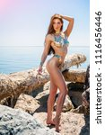 beautiful blond attractive...   Shutterstock . vector #1116456446