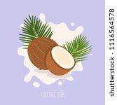 coconut milk. coconut on a milk ... | Shutterstock .eps vector #1116564578