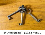 Vintage Iron Keys In A Keychain