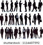 group with diverse business... | Shutterstock .eps vector #1116607592