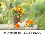 variety of fresh herbs ... | Shutterstock . vector #1116610202