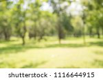 abstract blur city park bokeh... | Shutterstock . vector #1116644915