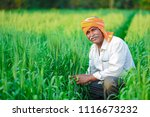indian farmer holding crop...