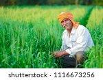 indian farmer holding crop... | Shutterstock . vector #1116673256