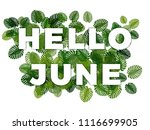 Text Hello June With Smooth...