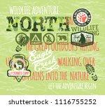 wildlife adventure outdoor... | Shutterstock .eps vector #1116755252