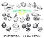 beautiful vector hand drawn... | Shutterstock .eps vector #1116765938