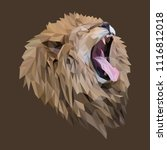 lion low poly design. triangle... | Shutterstock .eps vector #1116812018