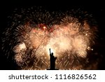 silhouette statue of liberty on ... | Shutterstock . vector #1116826562