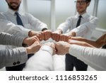 close up.smiling business team... | Shutterstock . vector #1116853265